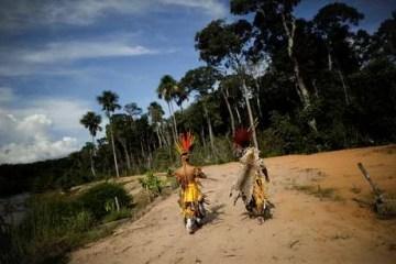 ativistas indígenas