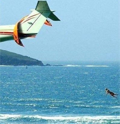 Humour Kite Surfer caught on a Airplane