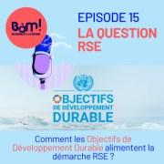 #Episode 15- Comment les ODD alimentent la RSE?