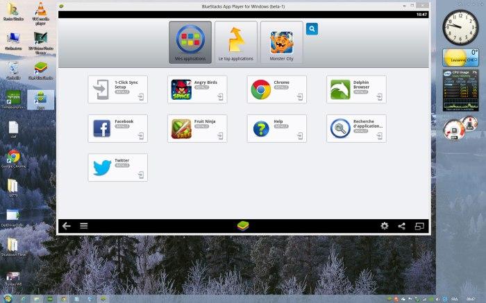 BlueStacks sur un bureau Windows 8, gonflé un brin...
