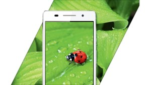 Le mode macro du Huawei Ascend P6.