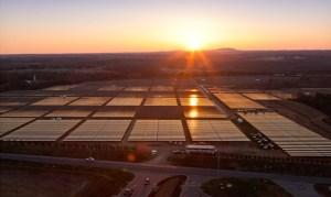 La centrale solaire d'Apple de Maiden en Caroline du Nord.