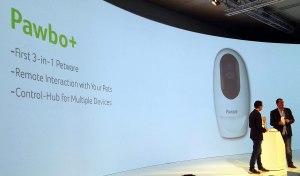 Acer Pawbo+.
