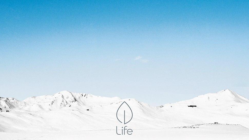 Life: un réseau personnel, qui a pour but de donner une nouvelle dimension aux relations interpersonnelles.