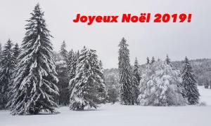 Joyeux Noël 2019: technologie et durabilité sont-ils incompatibles?