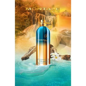 Montale Aoud Lagoon EDP 100vapo