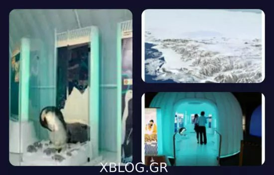 Η «Ανταρκτική» στο Ίδρυμα Μείζονος Ελληνισμού