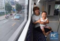 Transit Elevated Bus TEB-1 (4)