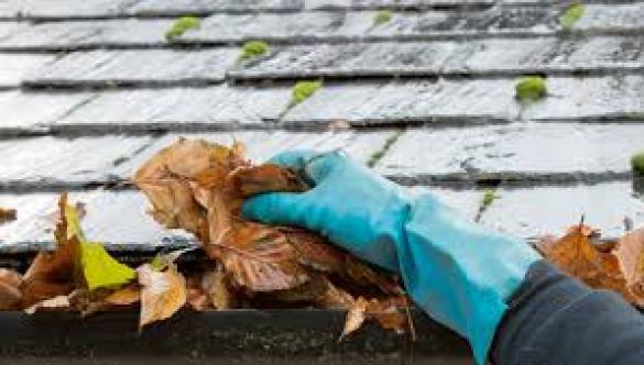 Home inspection chicago il, Home inspection homewood il, Home inspector chicago il, Home inspector homewood il,