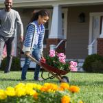 Make The Most Of Your Landscaping Projects