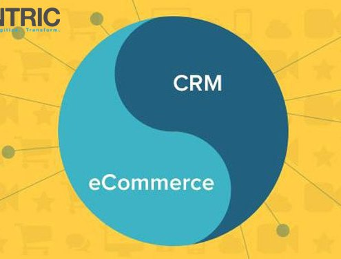 CRM and E-commerce