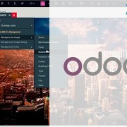 Odoo Implementation Service