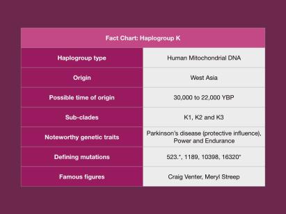 Analyze DNA raw data for Haplogroup K