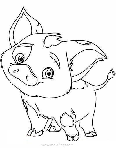 Moana Coloring Pages Animal Friend Xcolorings Com