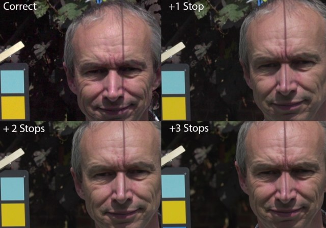 Crops at different exposure of LUT corrected A7s S-log2 footage.