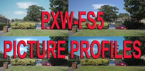 Caption Picture Profiles for the PXW-FS5.