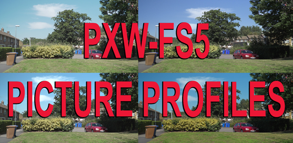 Picture Profiles for the PXW-FS5.