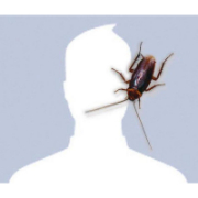 crazy profile pictures