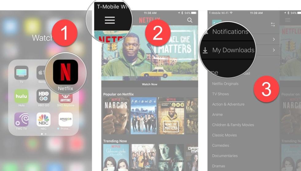 download Netflix movies screens 1