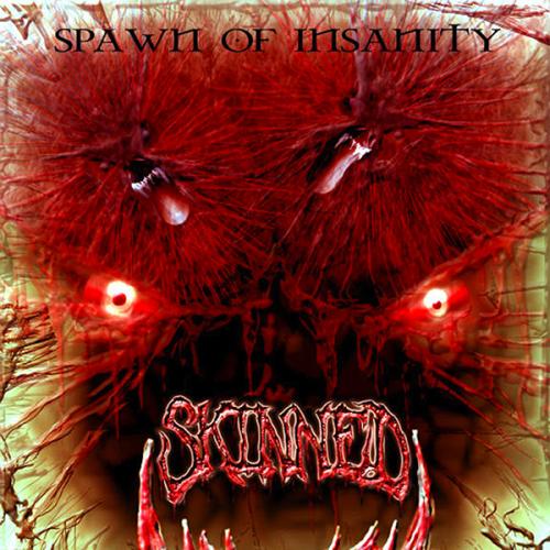 "SKINNED ""Spawn of Insanity"" CD"