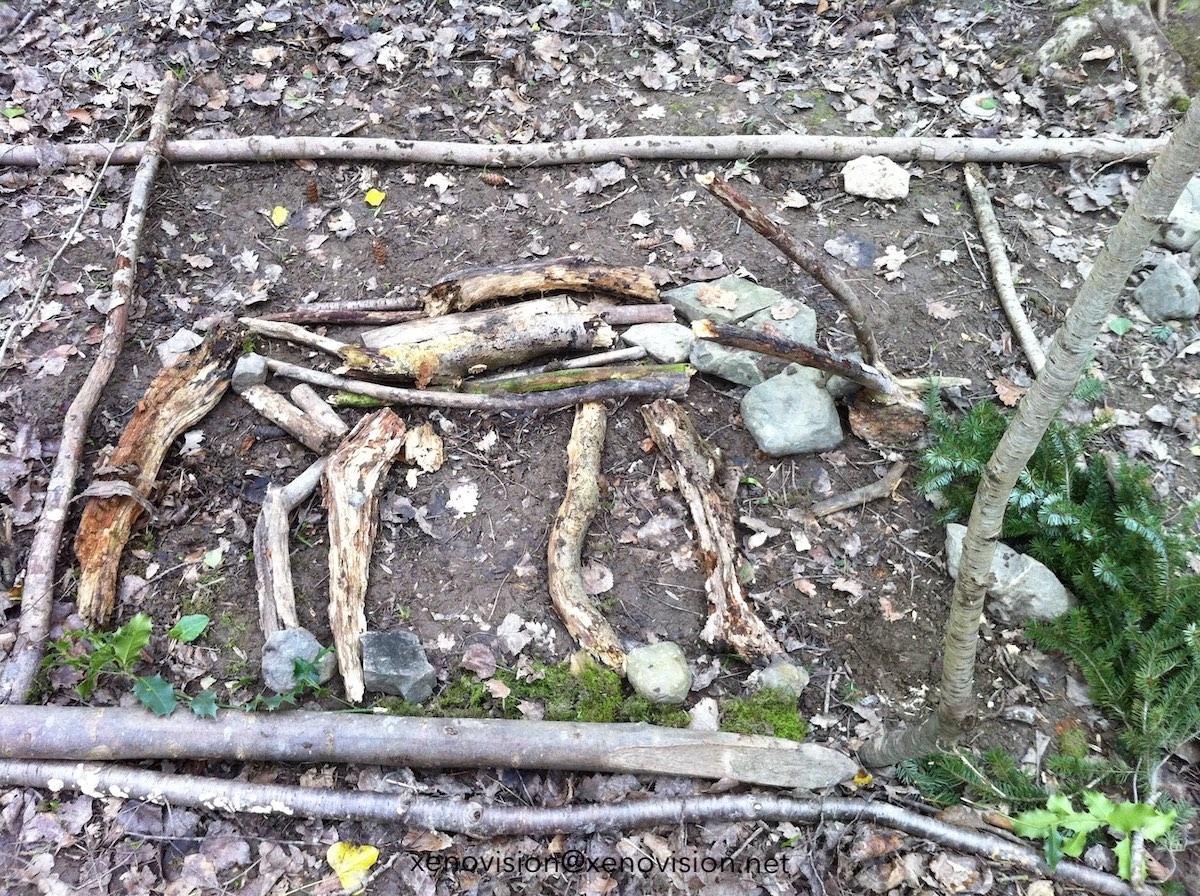 Forest School © xenovision@xenovision.net