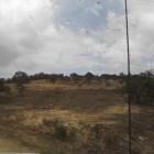 Sin regularizar 20% de tierras en comunidades mixtecas