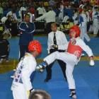 Cenat obtuvo 15 medallas en Torneo Challenger 2015 de taekwondo