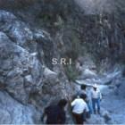 Descubren zona arqueológica en Zapotitlán Palmas