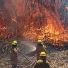 Fuerte incendio afectó 30 hectáreas de pastizales