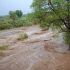 Provoca afectación lluvia caída en la noche y madrugada