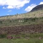 Surge conflicto por tierras en Cuyotepeji