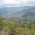 Denuncian habitantes de Zimatlán agresión por comuneros de Nopalera