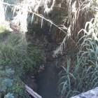 Piden atender contaminación en barranca del Terrero