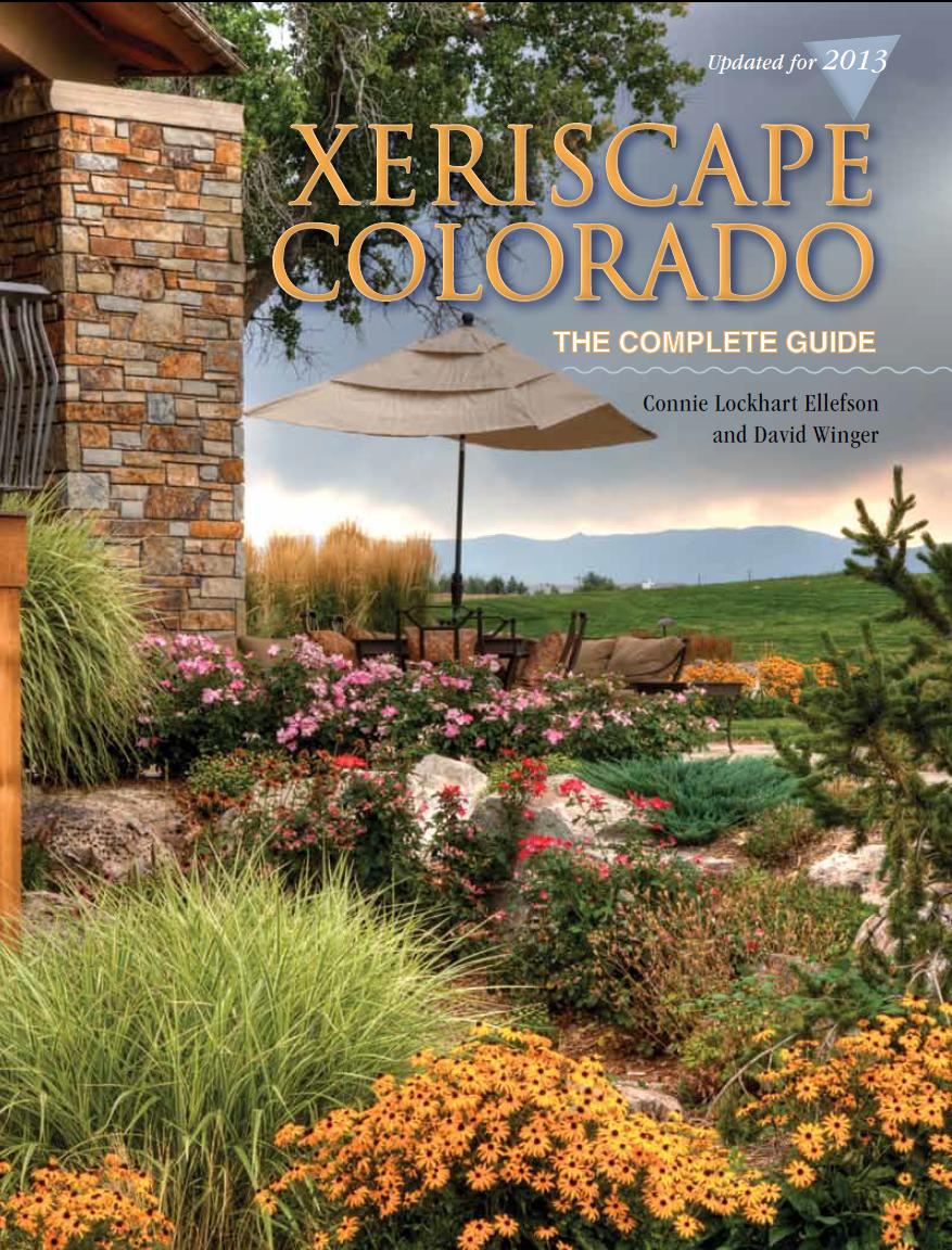 Picture Idea 4 you: Landscaping xeriscaping on Xeriscape Backyard Designs id=32094