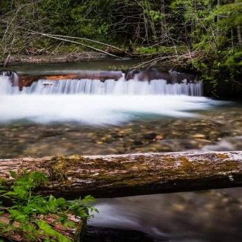 stinging-nettle-falls