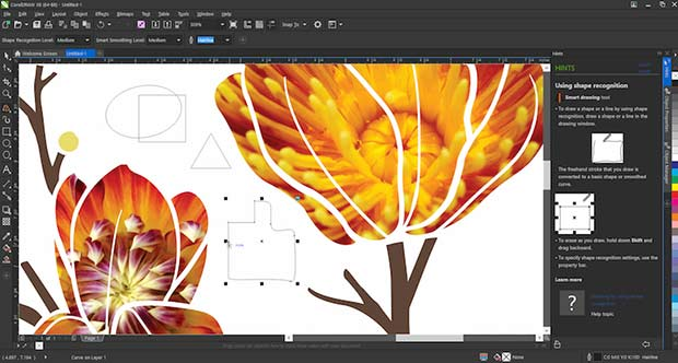 free download corel draw 12 from filehippo