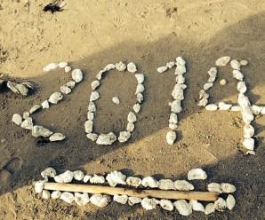 Rok 2014 v životě jedné nejmenované dívky