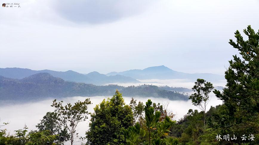 bukit-panorama-6