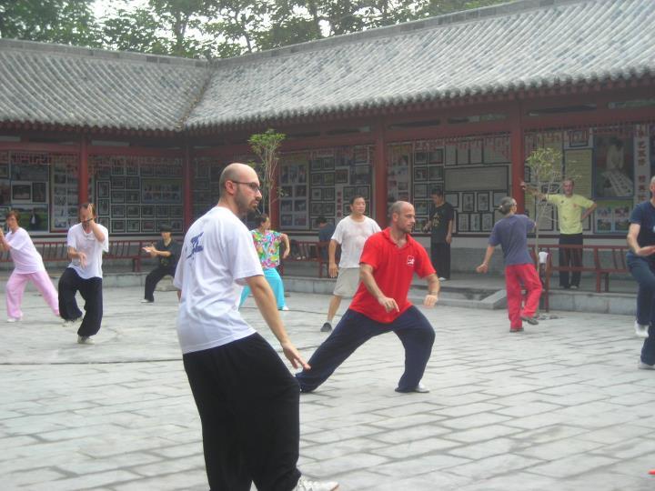 陈氏太极拳 il pugilato Taiji dello stile Chen