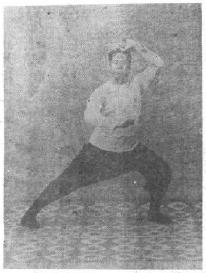 THE ART OF TAIJI BOXING (TAIJI QUAN SHU) | Brennan Translation