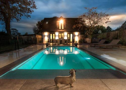 Pool Installation and Design