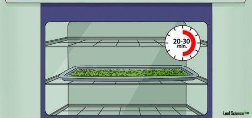 דה קרבוקסילציה - שלב חמישי: בוזקים את התפרחת על המגש