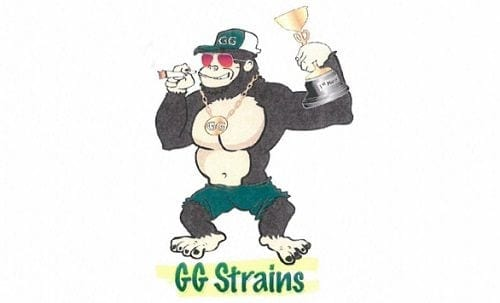 the GG-strains-trademark