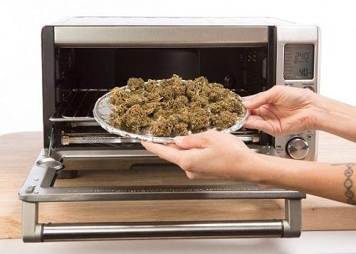 Buds inside oven