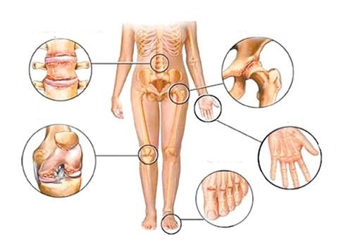поддержать здоровье суставов