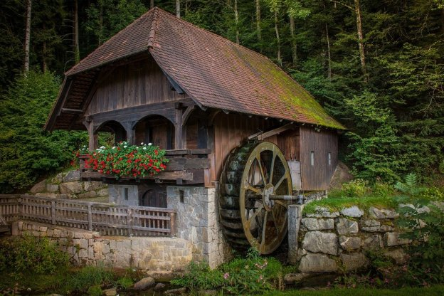 בית יפה בלב ירוק
