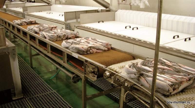 В Мурманской области внедряют экотехнологии в рыбопереработку