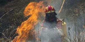 incendio-andratx-2013