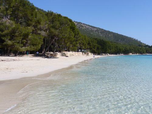 Playa Mallorca Platja de Formentor Con-ñ-de-españa
