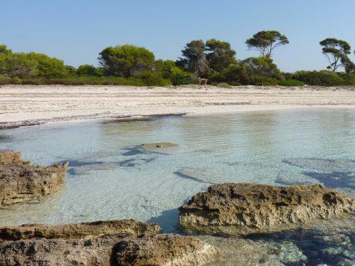Playa-Mallorca es-Caragol ñ